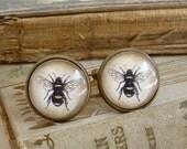 Bee Cufflinks - Honey Bee / Bumble Bee Cuff Links In Brass - Sherlock Holmes