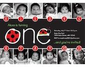 NEW: Lady Bug Timeline 1st Birthday Invitation - Digital File
