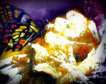 Original 8x10 Butterfly and Floral Canvas Wall Art