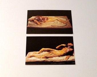 Nude Wax Statue Postcard Set (2) Vintage Anatomical Male Female Wax Figure La Specola Italy Medical Study Cadaver Mature Anatomy Study