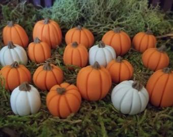 20 miniature thanksgiving autumn pumpkins fairy garden terrarium in orange and white terrarium miniature halloween craft supply woodland gar