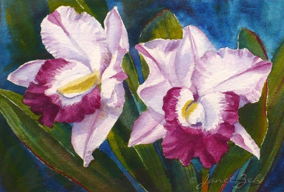 tropical flower painting magenta orchids original watercolor. Black Bedroom Furniture Sets. Home Design Ideas
