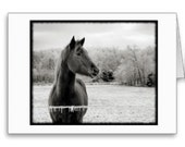 Black and White Winter Horse  Note Card with motivational quote on inside