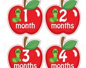 Neutral Monthly Baby Stickers, 1 to 12 Months, Monthly Bodysuit Stickers, Baby Age Stickers, Apples