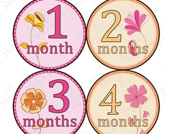 Girl Monthly Baby Stickers, 1 to 12 Months, Monthly Bodysuit Stickers, Baby Age Stickers, Flower Floral  (022-2)