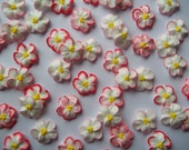 Red-tipped white royal icing flowers -- Handmade cake decorations cupcake toppers edible (24 pieces)