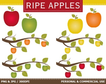 50% OFF SALE Digital Apples Clip Art Autumn, Fall, Leaves, Tree, Apples, Branches Clip Art,