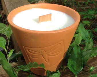 Citronella in Dragonfly Terra Cotta
