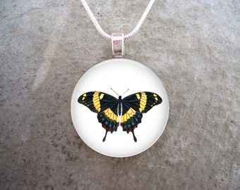 Orange Butterfly - Glass Pendant Necklace - Nature Jewelry - Butterfly 11