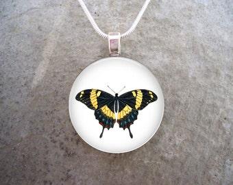 Butterfly Jewelry - Glass Pendant Necklace - Butterfly 11