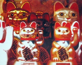 Chinese Cats in Chinatown - limited edition screenprint