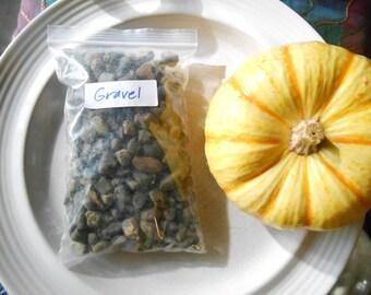 Pea Gravel For Terrariums