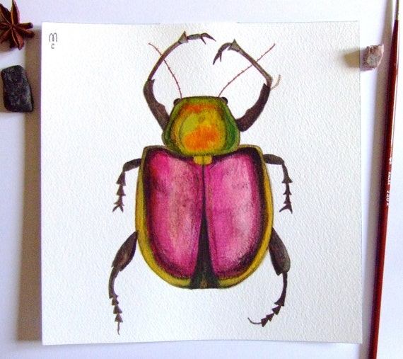 Beetle Insect Original Watercolor Painting Ink Animal Drawing Decor Insect Pink Contemporary Art Insect Painting Original Art Still Life