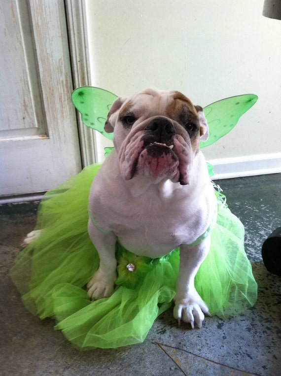 Dog Halloween Costume Dog Costume Dog Tinkerbell Fairy