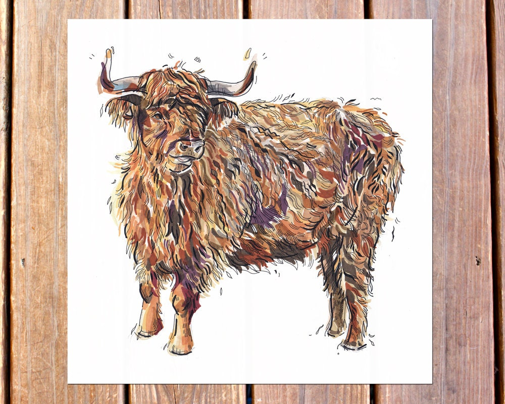 Highland cow art print illustration cattle farm by for Cow painting print