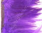 Rooster hackle trim, Purple on bias tape, per yard