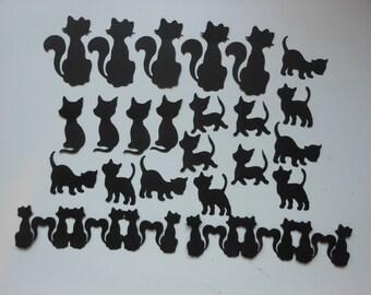 Cats, cats, cats (634) 2c