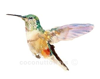 Hummingbird - Large Size - Watercolor Painting - Art Print - Nursery Art