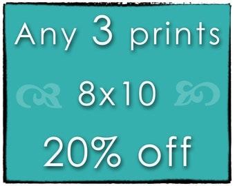 DISCOUNT PHOTO SET - Any 3 Prints - Three 8x10 Photographs of Your Choice - Save 20%