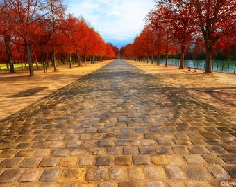 """Landscape Photography - red autumn leaves and yellow path, red autumn photography, fiery red, autumn art, autumn wall prints- """"Autumn Path"""""""