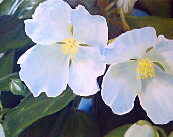 Original Painting - White Blossoms by David Lawter