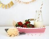 Retro Striped Paper Trays/Food Boat - DIY Instant Download Printable PDF