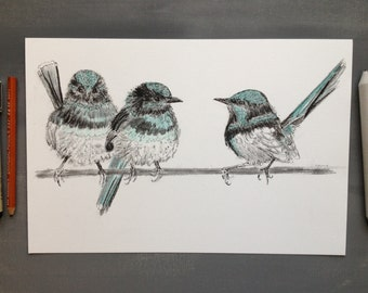 Blue Fairy Wrens Birds On A Wire 12x8 Ink, Charcoal and Colored Pencil