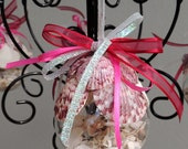 Handmade Seashell Christmas Ornament from Florida!