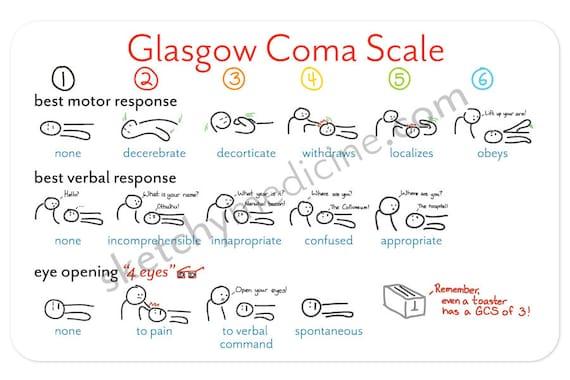Glasgow Coma Scale Pocket Card