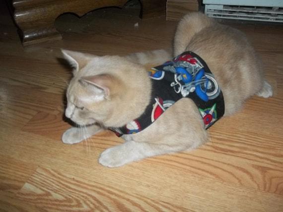 Can i make a cat harness