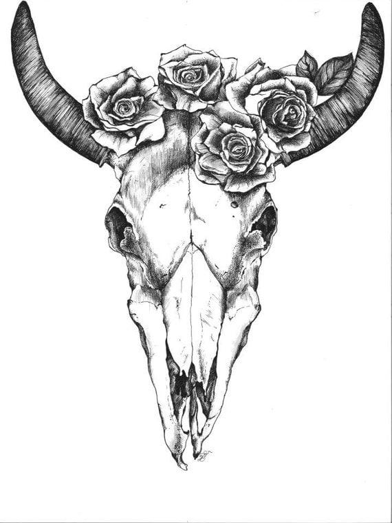Bull Skull with Roses by quinndelahanty on Etsy | 570 x 760 jpeg 72kB