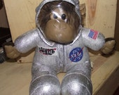 Kennedy Space Center Astronaut Chimp