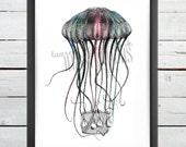 Jellyfish Basket, Art Print, Illustration