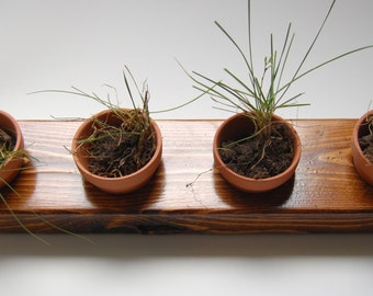 Rustic Wood Indoor Window Herb Garden