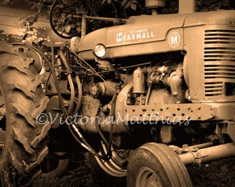 Tractor Farmall fine art rustic outdoor antique vintage image photograph matted print 5x7