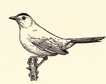 Gray Catbird linocut (black ink)