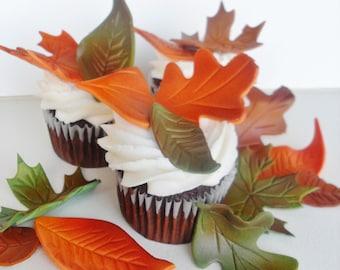 Fondant Fall Autumn Leaves 1 Dozen