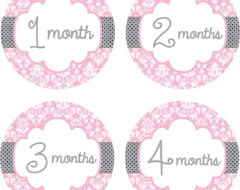 Baby Month Stickers Baby Monthly Stickers Girl Monthly Shirt Stickers Pink Gray Damask Shower Gift Photo Prop Baby Milestone Sticker