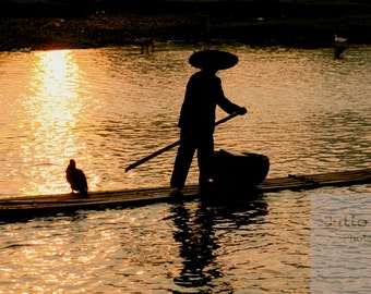 Photo print: Cormoran fisherman in China. Fine art photography. Photo
