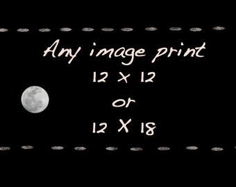 Fine Art Photography Print 12X12 or 12X18 - Wall Art - Home Decor Prints