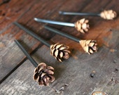 Set of Five Tiny Hemlock Cones (Terrarium Use)