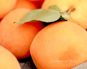 Fruit Photography, Apricot Photography - Fine Art Photography