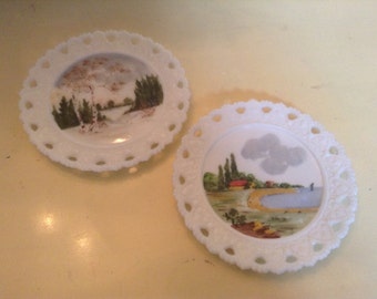 Vintage Hand Painted Plates