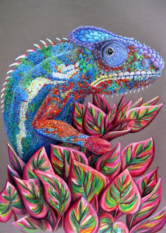 Items similar to Colored Pencil Drawing of a Chameleon on ...