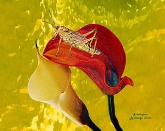 """Grasshopper 10"""" X 8"""", print, by Artist Carolyn Furin"""