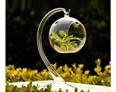 1Pc 22X8CM Fashion Handmade Succulent Plants Vase,hanging hook flower vase,Hanging Flower Glass Vase