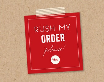 RUSH MY ORDER Please | add on to any order | 6 hrs, 12 hrs, 24 hrs or 30 hrs first proof review turnaround | Please convo me before purchase