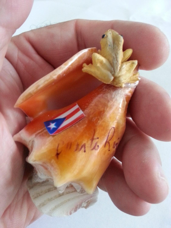 Name Puertorriqueno: Caracol Con El Coqui Y La Bandera De Puerto Rico
