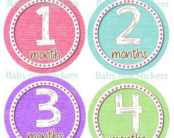 Baby Milestone Stickers Baby Girl Monthly Stickers Month Stickers Monthly Bodysuit Stickers Photo Prop 032
