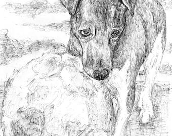 Custom Pet Portrait in Pen A5